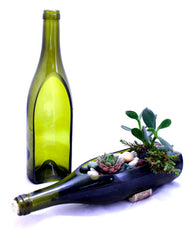 Wine Bottle Garden Succulent Planter - Bottle Only