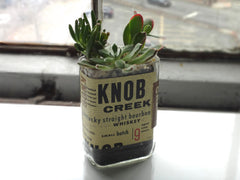 Knob Creek Whiskey Bottle Garden Succulent Planter Kit - Complete Kit