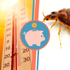 The Cost of a Bed Bug Heat Treatment