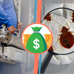 The Cost of Chemical Treatment for Bed Bugs