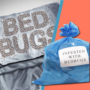 Do Bed Bugs Die In Plastic Bags Bed Bug Sos