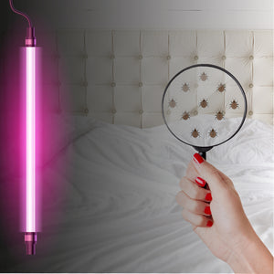 How to Find Bed Bugs with Black Light