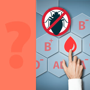 Are Bed Bugs Attracted to Certain Blood Types?