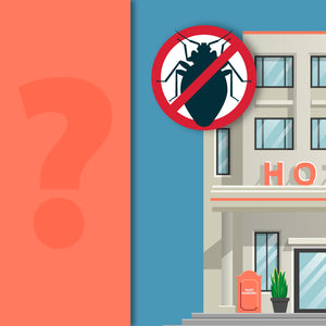 Do Hotels Have to Report Bed Bugs?