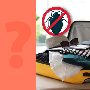 How to Protect Your Luggage from Bed Bugs