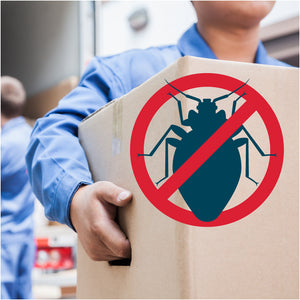 How to Avoid Bed Bugs When Moving