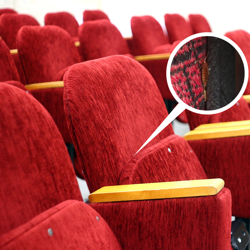 Bed Bugs In Movie Theatres Is It Possible To Get Bed Bugs After Watc Bed Bug Sos