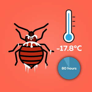 What Temperature do Bed Bugs Freeze at?