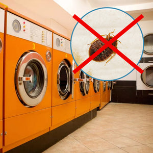 How to Prevent Bed Bugs When Using the Laundromat
