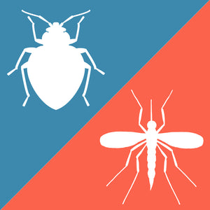 The Difference between Mosquito and Bed Bug Bites