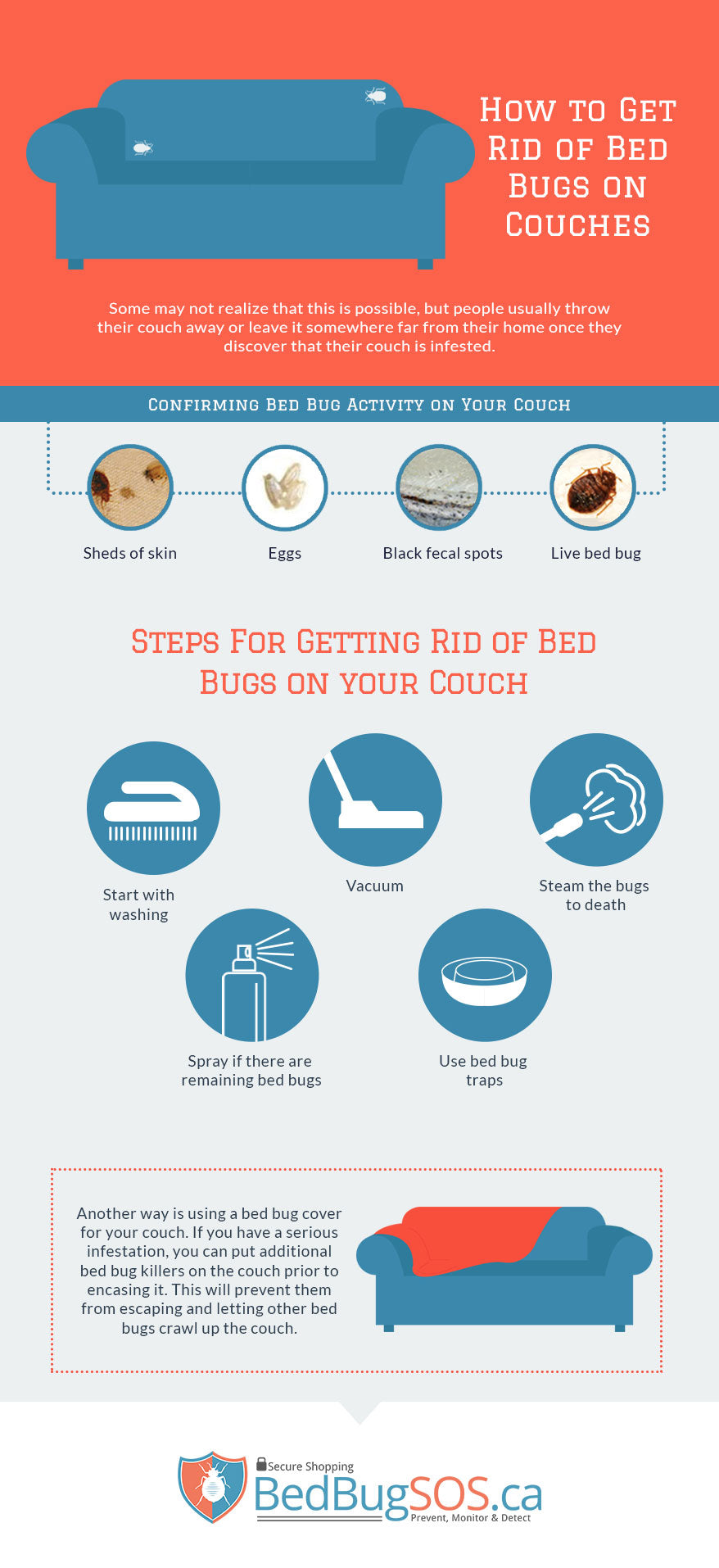 Prime How To Get Rid Of Bed Bugs On Couches Bed Bug Sos Blog Blog Ocoug Best Dining Table And Chair Ideas Images Ocougorg