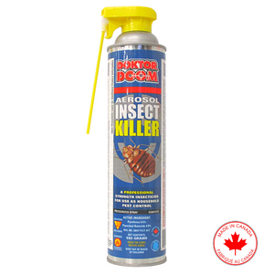Professional Aerosol Insect Killer - 550g