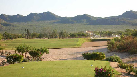 Cabo San Lucas Country Club tee box