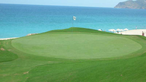 Oceanside Green at Cabo Real Golf Club