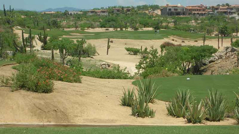 Third Hole at Cabo Del Sol Ocean Course