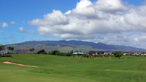 Vista Vallarta Weiskopf fairway