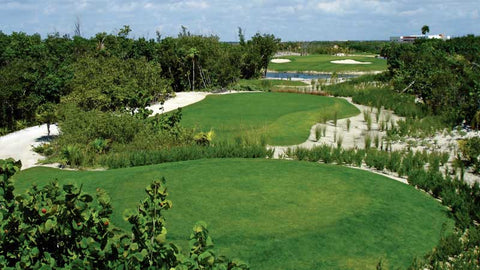 Riviera Cancun back tees
