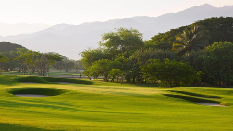 Greg Norman, Puerto Vallarta