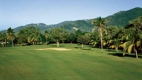 Acapulco Princess fairway view