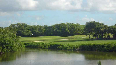 Water Hazard at Iberostar Cancun