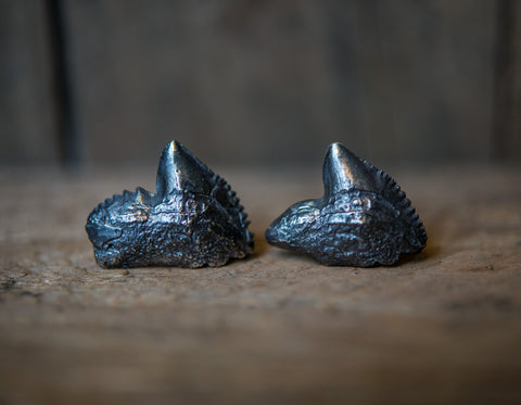 Antiqued Tiger Shark Tooth Cufflinks