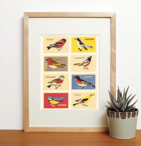 Matchbox Birds