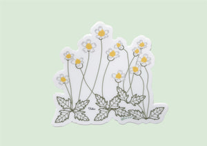 Tridax sticker