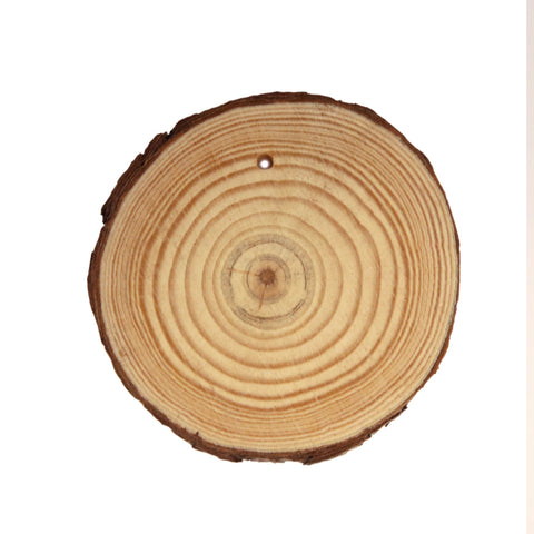 "Perforated Natural Wood Slice - Approx. 3.5"" (Size may vary)"