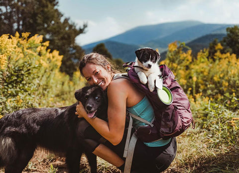dogs and owner on a hike - puppy in the backpack