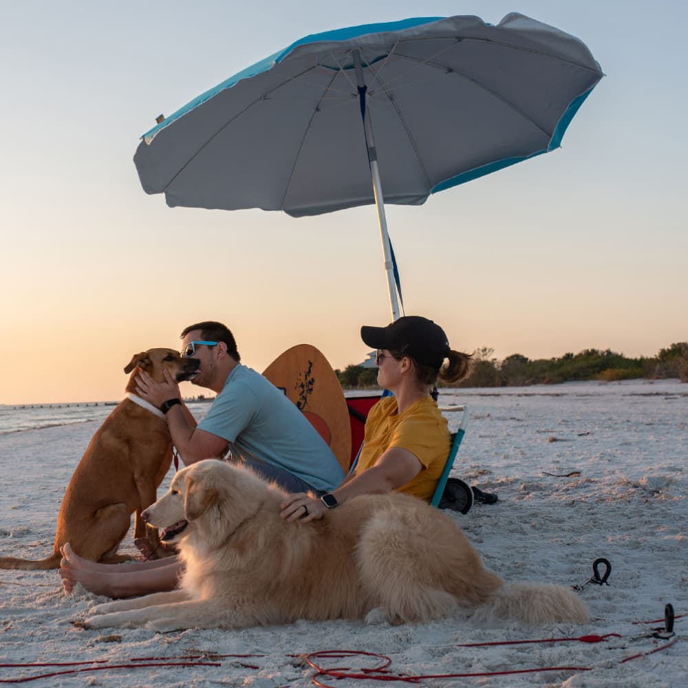 family with dogs at the beach and saker canine dog stake