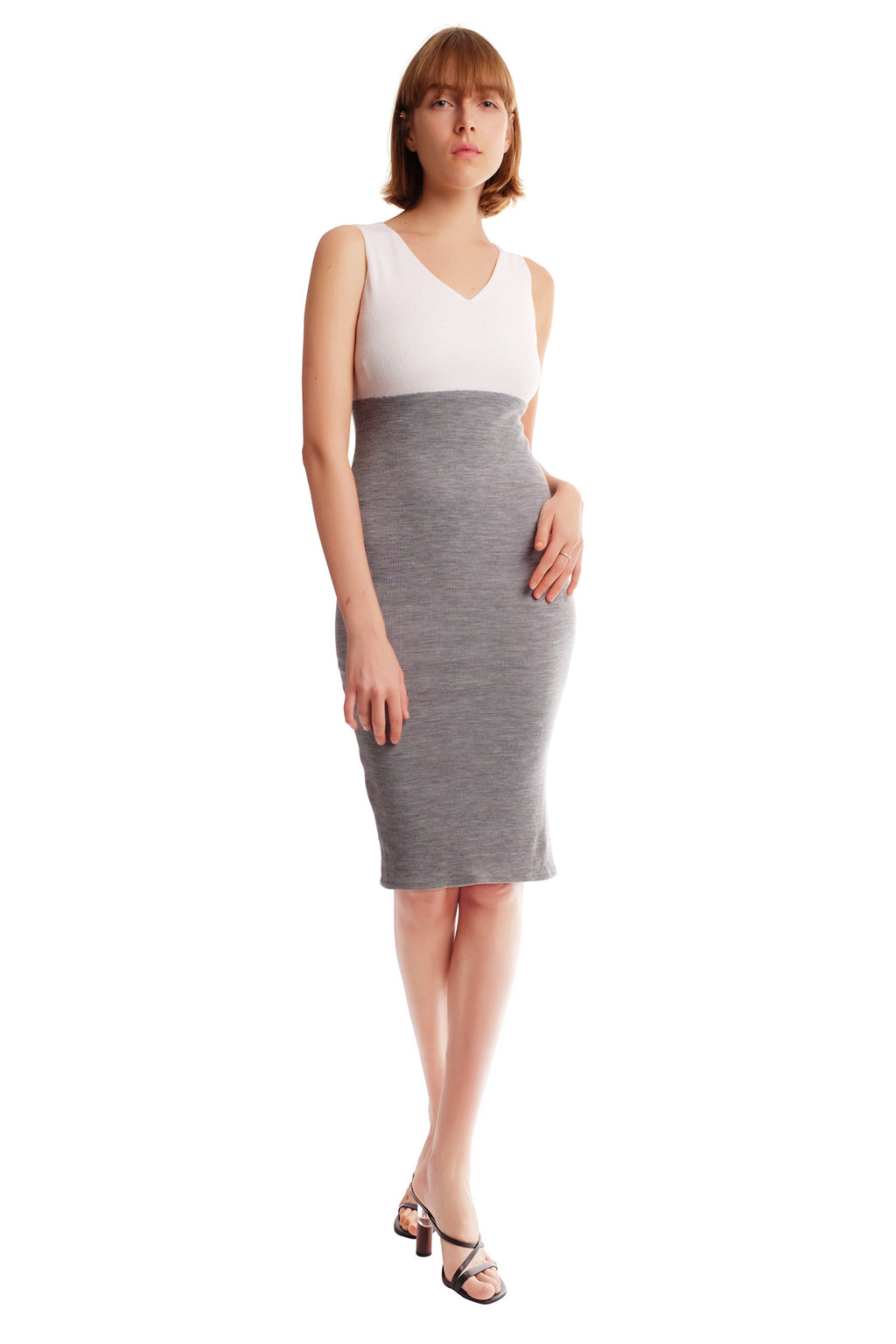 Quinny Two-Toned V-Neck Dress
