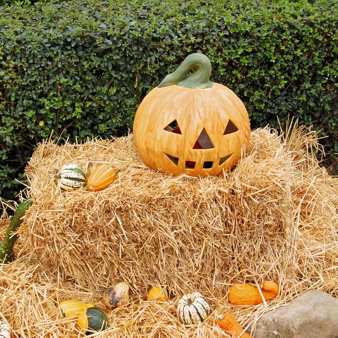 7 DIY Halloween Decorations for the Spookiest Holiday Ever