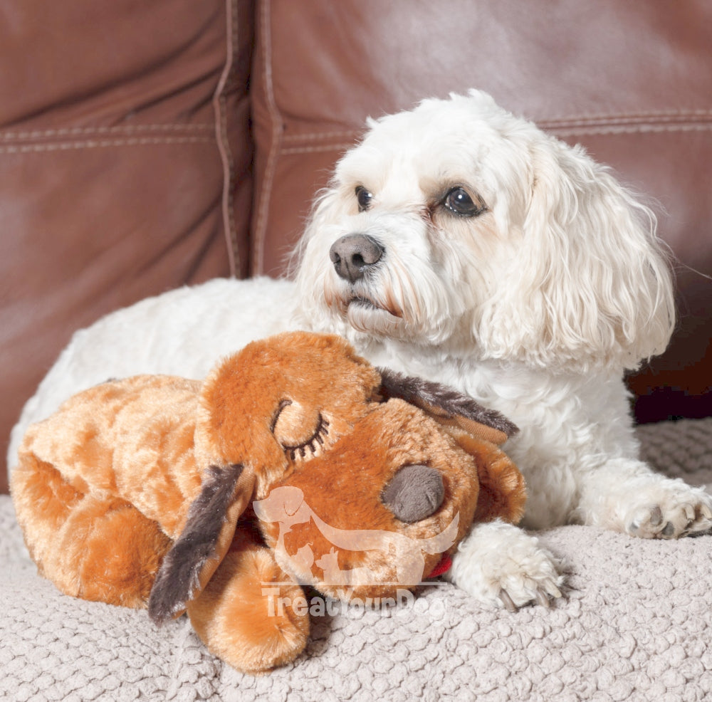 Looking for a pet dog calming anxiety solution? Meet your dog's new best mate… Snuggle Puppy!