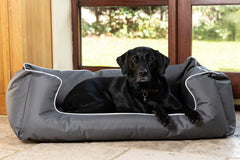 Recommended Beds For Large Dogs