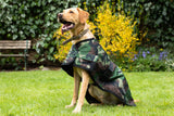 Dog coats help reduce drying and cleaning time for dog owners