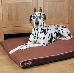 Large Dog Bed Reviews To Buy Online