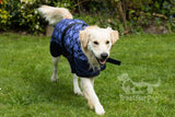 Long haired dog breeds like Golden Retrievers benefit from a waterproof dog coat