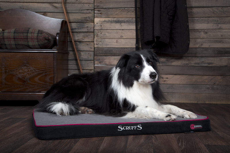 Thermal Self Heating Mattress Dog Bed in Black