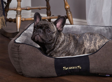 Chester Box Dog Bed in Graphite