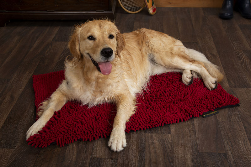 Noodle Dog Mat in Red