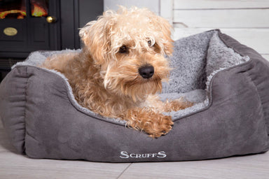 Scruffs Cosy Dog/Puppy Bed in Grey