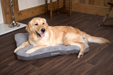 Scruffs Cosy Dog/Puppy Mattress Bed in Grey