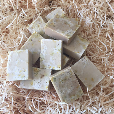 Be: Clean Antibacterial Natural Dog Shampoo Bar