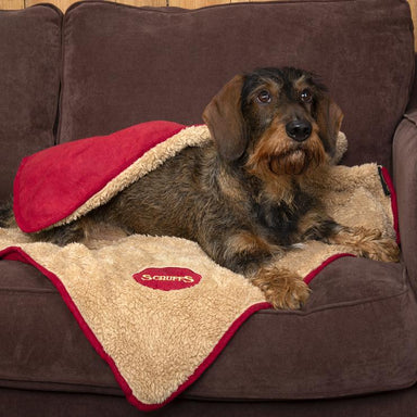Scruffs Reversible Cosy Blanket in Red
