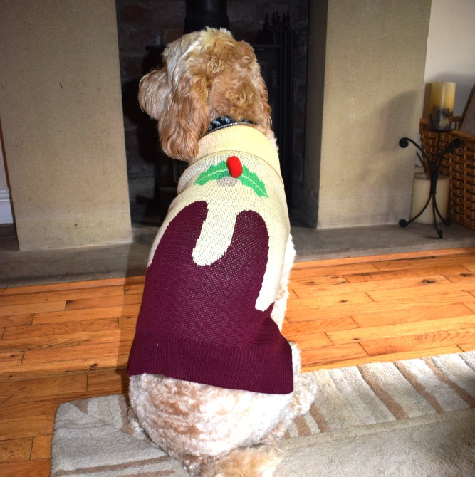 Dog Christmas Jumper with Pom Pom Pudding