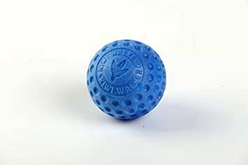 Kiwi Walker Mini Ball - Blue