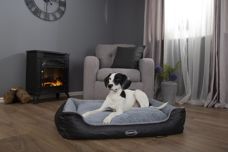 Scruffs Chateau Orthopaedic Memory Foam Dog Box Bed