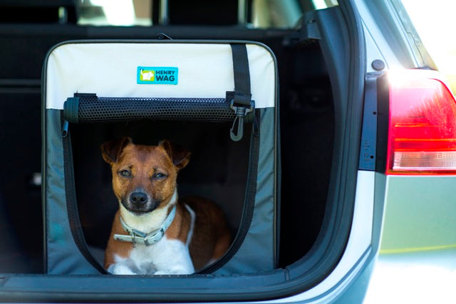 Folding Soft Travel Crate For Dogs