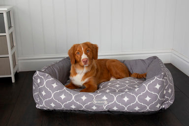 Casablanca Box Dog Bed in Grey