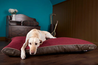 Scruffs Hilton Orthopaedic Memory Foam Dog Mattress Red